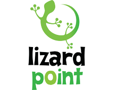Lizard Point Consulting